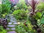In diesem Garten wachsen alle möglichen Blumen und Pflanzen.