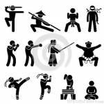 Welche Kampfkunst ist für mich geeignet?