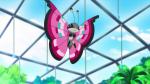 Shadow liegt erschöpft im Pokémon Center und lässt Schwester Joys Behandlung über sich ergehen. Das Training war hart, aber es hat sich gelohnt! N