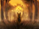 Warrior cats - Deine wahre Bestimmung