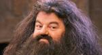 Hagrid hat dir gerade erklärt das du ein Zauberer bist... Wie reagierst du?