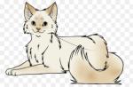 Fakt 16: Wenn Minka einen Clan Namen gewollt hätte, würde sie Gänseblümchenschweif heissen.