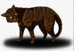 """Fakt 17: Im russischen Warrior Cats wird Brombeerkralle """"Taubeere"""" gerufen."""