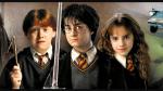 Als Hermine versteinert wurde fand Harry in ihrer Hand eine Buchseite über Basilisken. Auf welcher Seitenzahl war es?