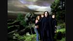 Auf Seidenschnabels Verhandlung hat Hagrid eine getupfte Kravatte an. Wieviele Punkte hat sie bis zum Knopf?