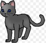Fakt 3: Feuerstern hat wahrscheinlich Regenpelz(vom DonnerClan) nach Regenpelz(vom WolkenClan), der im Kampf gegen den Ratten gestorben ist, benannt.