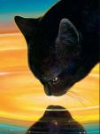 Fakt 8: Als Distelblatt erfahren hat, dass sie eine HalbClan Katze ist, wollte sie Anführerin werden.