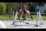 Lia und ihre Mutter haben ein weiteres Pony in ihrem Stall. Ein New Forest Pony. Wie heißt er?