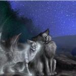 Die Mondfelle haben gesprochen: Schatten wird einbrechen, und mit seinen mächtigen Pranken alles an sich reißen. Doch Sonnenstrahlen können durch d