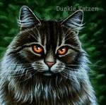 Die absolute Ausnahme! KEIN GEIßEL: o Diese Katze wirkt geheimnisvoll und.... Naja...Geheimnisvoll