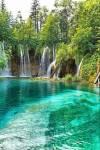 Innerhalb dieses Waldes liegt ein großer, klarer See.