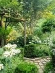 Im Außenbereich liegt ein Garten mit vielen Pflanzen.