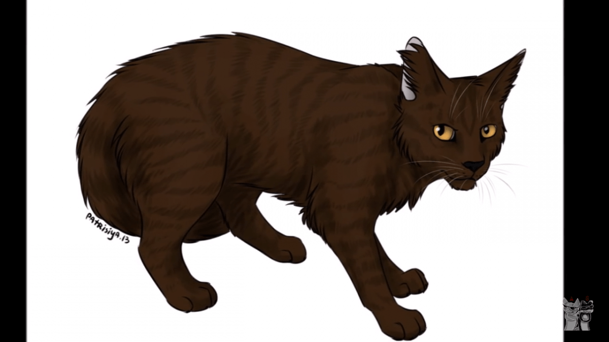 erfundene warrior cats jungen namen