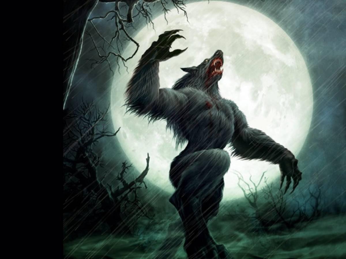 Ich Bin Kein Werwolf