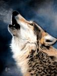 WolfRPG Mini-FF