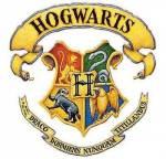 Harry Potter Next Generation-RPG