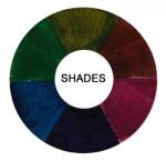 Frage 3: Schatten Waldgecko: Wenn du einen Menschen malst und ihn schattieren möchtest, welcher Farbton wäre dann am besten? (Vorsicht! Das bezieht