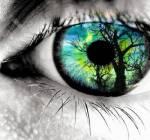 Welche Augen Farbe hast du?