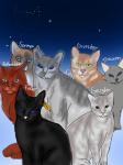 Hey, hab mal ein Bild von ein paar unserer Katzen gemacht. Wen könnte ich noch machen? ( Ps: Unser neues Cover hat die Inhaberin der Website gemacht: