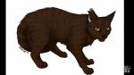 Welche meiner ausgedachten Warrior Cats bist du?