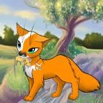 ((fuchsia))Tigerblüte (Ich):((efuchsia)) Das bin ich und jetzt ein Steckbrief: Name: Tigerblüte Geschlecht: W Aussehen: Rotbraun mit weißen Flecken