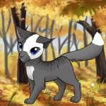 ((gray))Wolfsflamme((egray)) Diesen Charakter hat sich auch Sonnenuntergang gewünscht ich hoffe das passt so Name: Wolfsflamme Geschlecht: weiblich A