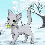 ((red))Eisblatt((ered)) Dieser Avatar wurde sich von Eisblatt gewünscht: Name: Eisblatt Geschlecht: Weiblich Aussehen: dünnes, helles, silbergraues