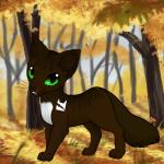 ((maroon))Tigersprung)) Diese Katze wurde sich von Sonnenuntergang gewünscht Name: Tigersprung Geschlecht: männlich Aussehen: dunkelbraun getigerter