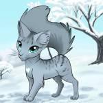 ((blue))Blauherz((eblue)) Auch diese Katze wurde von Blauherz erfunden ich möchte um Verzeihung bitten dar sie keine weißen Pfoten hat 😅😔 Name