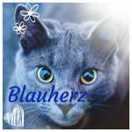 Eine meiner besten Freundinnen hier auf Teste dich ist Blauherz! 💙💙💙💙💙💙 In meinem RPG ist sie ebenfalls drin, dort spielt sie Blauhe