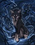 Warrior Cats: Wie gut kennst du dich aus?