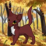 Diese Katze ist von Lindenschatten (weiße Pfoten oder Schwanzspitze gehen leider nicht.) Hoffe es ist okay und du erkennst ihn! Name: Kojote Geschlec