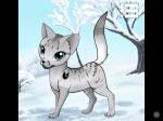 STECKIS: Warrior Cats - Der DunkelClan / Schatten des Waldes 2.0