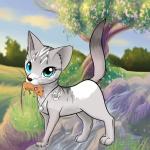 Wie willst du als Katze aussehen?🐱