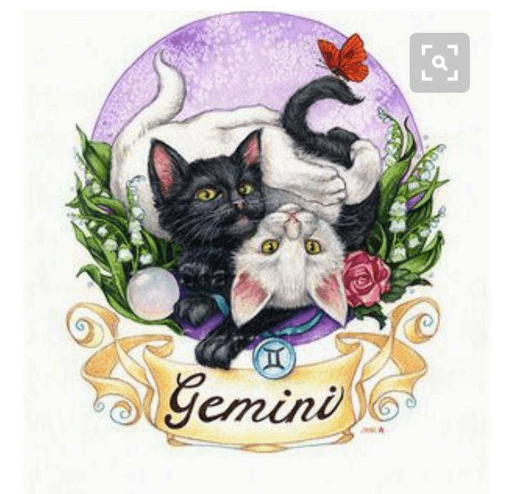 ((big)) ((red)) Team Gemini ((ered)) ((ebig)) Das Wappen der Klasse, dass alle als Brosche an ihren Uniformen tragen, ist das hier: ♊ (Das Zeichen a