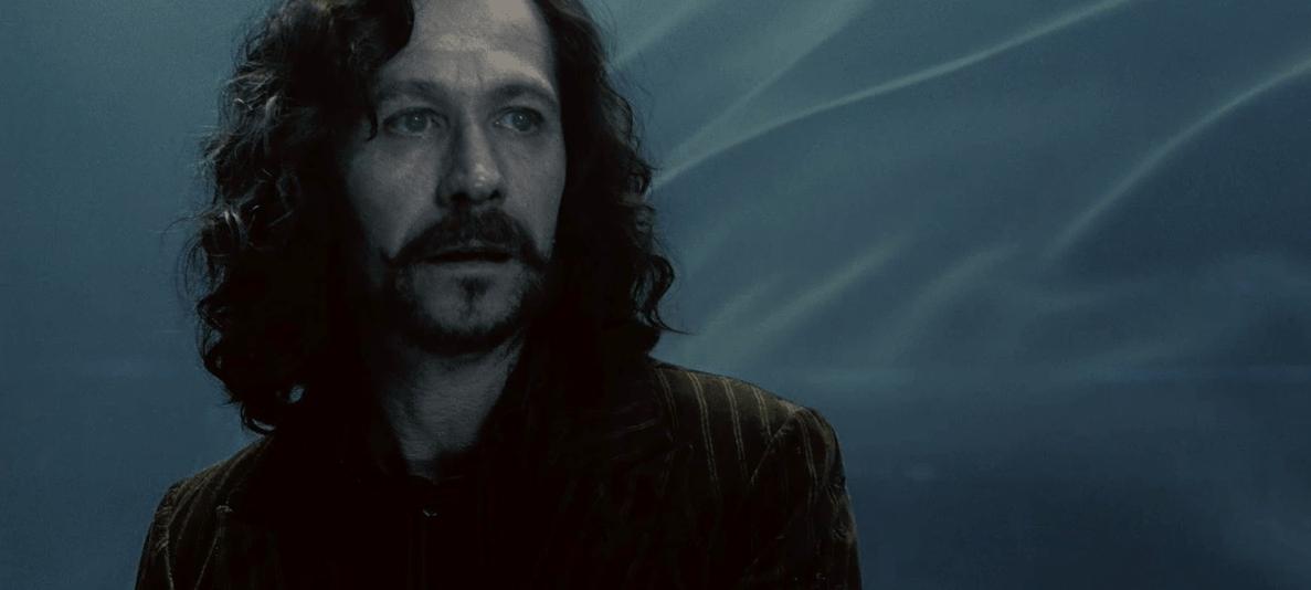 Was waren Sirius letzten Worte und zu wem?