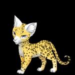 Name: Leopardenfleck/schweif Rang: Schülerin/Kriegerin Aussehen: Bild