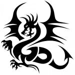 Wer sind die Drachenbrüder?