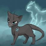 Warrior Cats - Wie ich mir die Katzen vorstelle