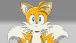 Welcher Sonic Charakter passt am ehesten zu dir?