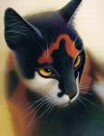 ((bold))((big)) Das Gesetz der Krieger ((ebold)) ((ebig)) ((bold))1. Beschütze deinen Clan, selbst mit deinem Leben. Du darfst Freundschaften mit Kat