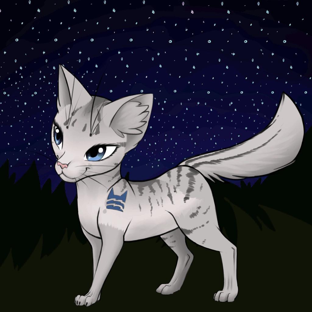 Warrior Cats - Wie ich mir die Katzen vorstelle 2.0