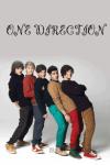 One Direction - Wer passt zu dir?