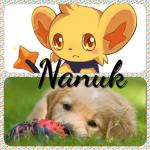 ((bold))((fuchsia))*knuddel einen Golden Retriever Welpen* Puppy!((efuchsia)) ((olive))Zap: Das ist Nanuk, der Welpe von der Hündin unserer Nachbarin