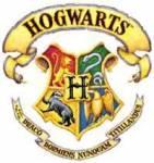 Es gibt nur 3 Zauberschulen auf der Welt.