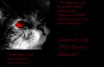 Die Rache beginnt - Todesclan (Warrior cats Rpg)