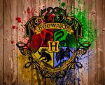 So und welches Hogwarts Haus magst du denn am liebsten?