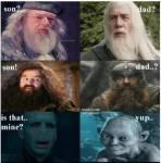 Harry Potter oder Herr der Ringe