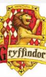 In welches Hogwarts-Haus würdest du kommen?