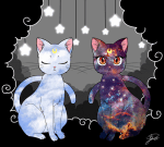 ((big))((bold)) Jordan und Ashley als Katzen
